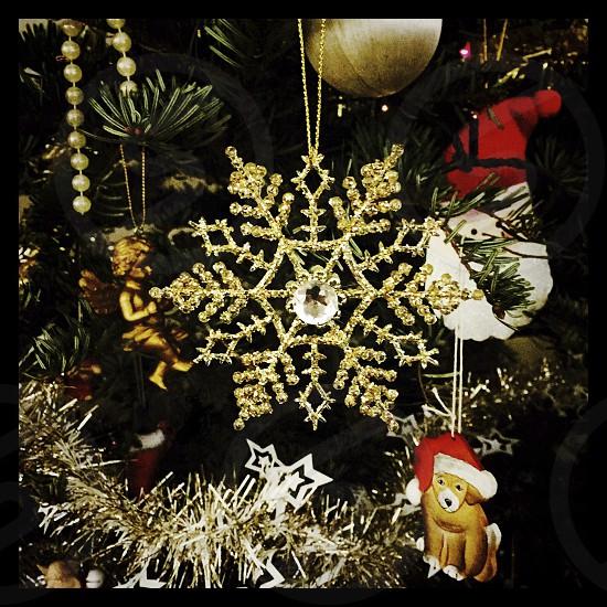 Christmas ornaments on a tree photo