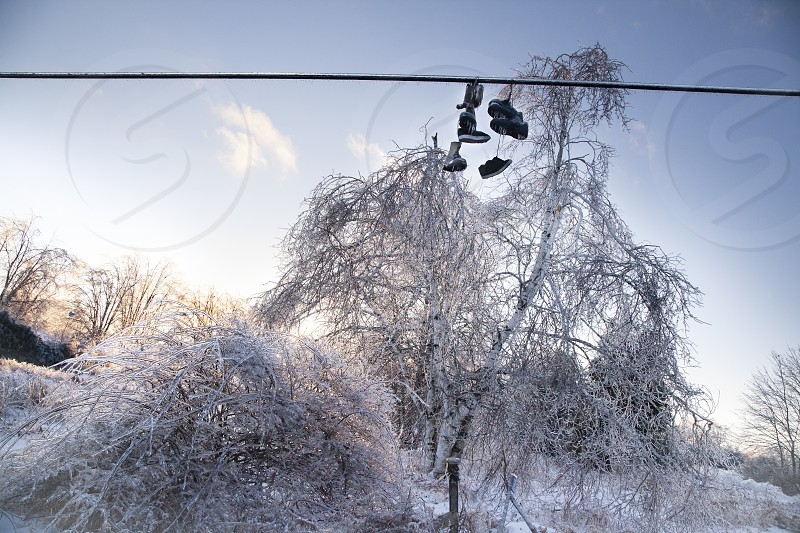 Frozen Shoes on a line are covered in ice from an ice storm. The ice covers them and trees with a thick layer showing a cold winter scene. photo