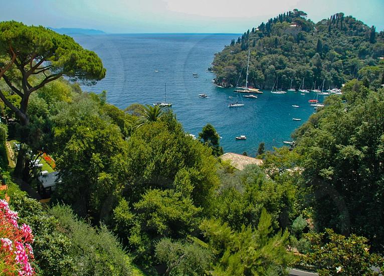 yachts and sailboats docked at sea high angle view photograph photo