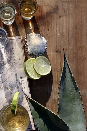 Triple types of tequila salt lime map Mexico agave leaves copy space. photo