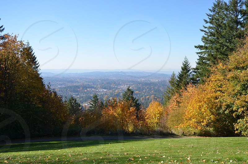 View of Portland Oregon from Council Crest Park photo