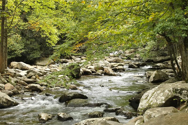 Smoky Mountain National Park. photo