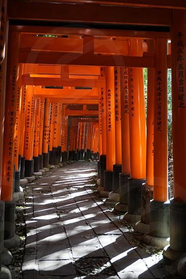 Fushima Inari Shrine Tori Gates photo