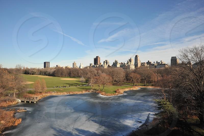 New York City Centrap Park Winter photo
