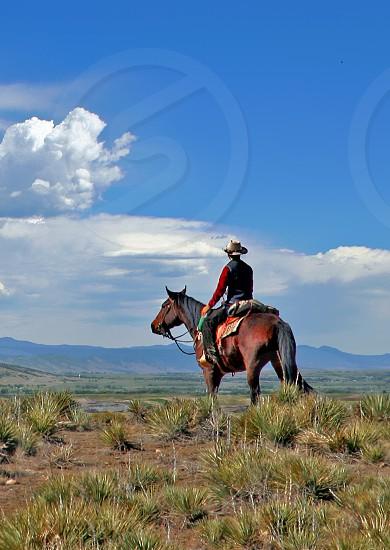Cowboy on horseback photo