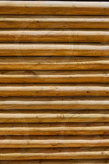 fence of stacked round trunks wood pattern texture background photo