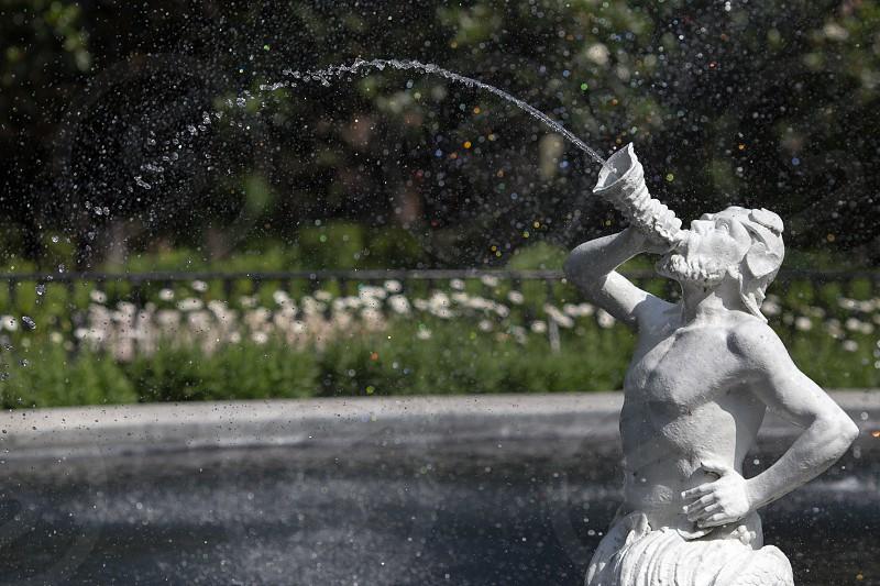 The fountain in Forsyth Park Savannah Georgia photo