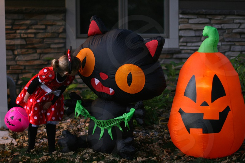 Halloween kids Halloween decor costumes Minnie Mouse black cat pumpkin photo