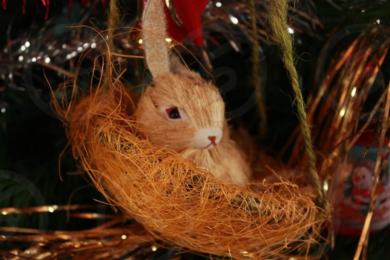rabbit on nest christmas decor photo