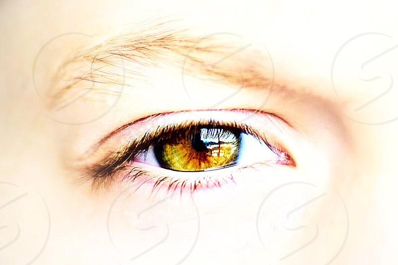 Œil regard vert iris pupille reflet cils sourcil enfant pur beauté photo