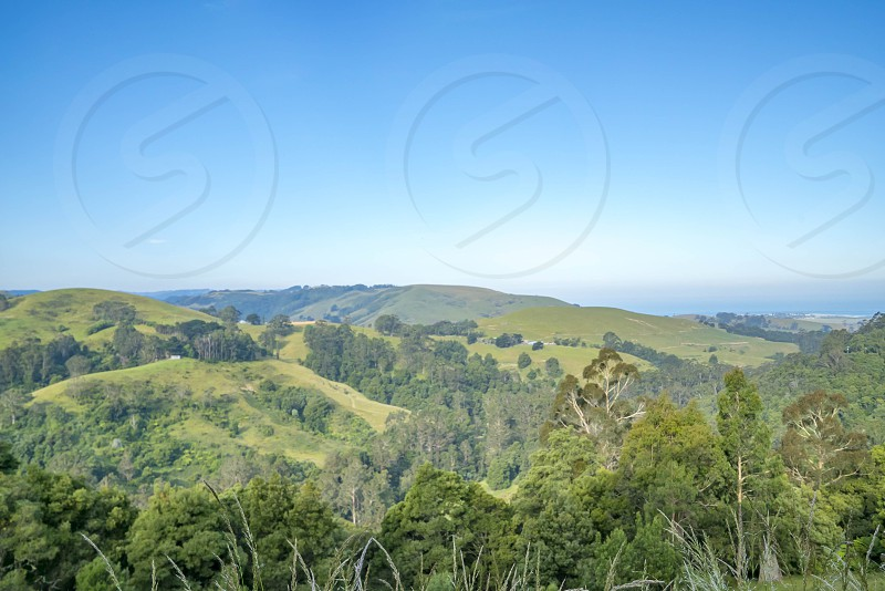 Great Otway National Park VIctoria photo