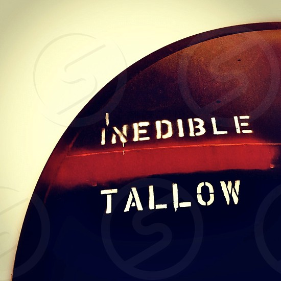 inedible tallow  disc photo