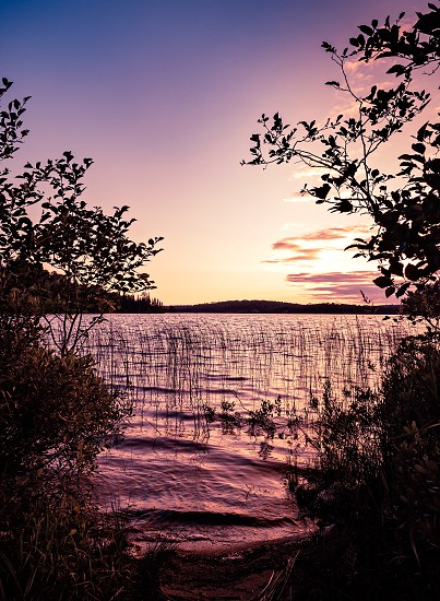 Sunset View framed by silhouetted trees from the shores of French Lake at Chippewa campground in Quetico Provincial Park Atikokan Ontario Canada photo