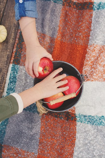 kids fall picnic with apples  photo