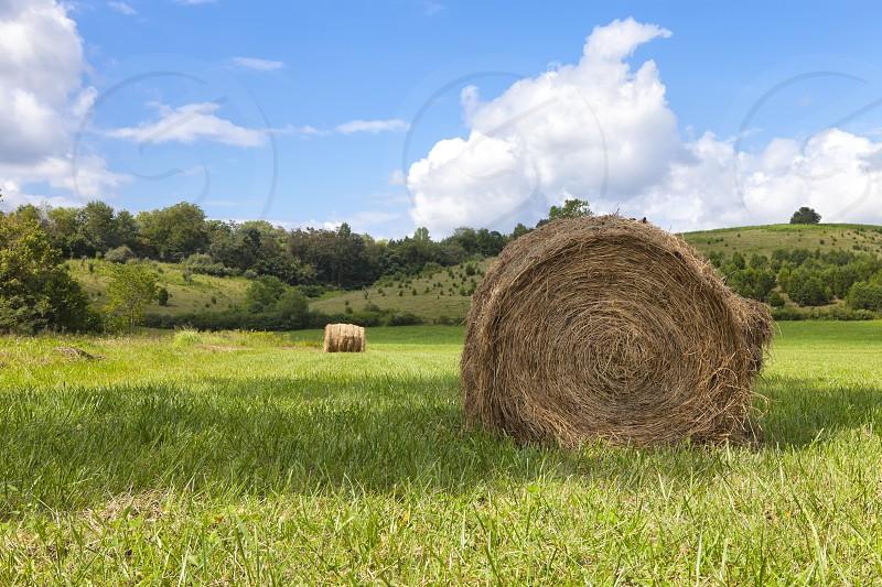 Landscape - Farmland photo