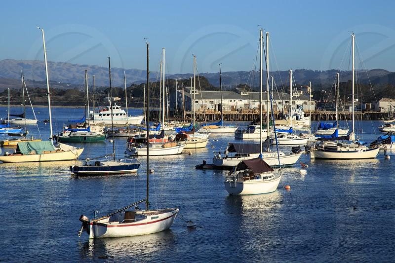 Monterey Bay photo