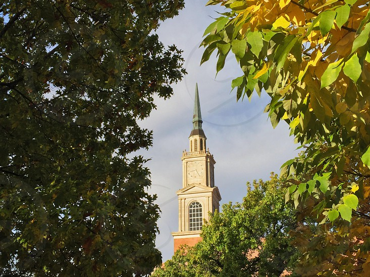 church steeple viewed through tree leaves photo