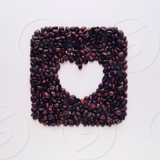 heart shaped coffee seeds  photo