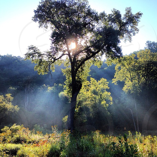 Misty morning hike photo