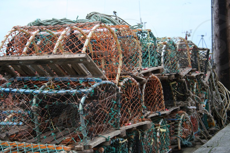 Colourful lobster pots  photo