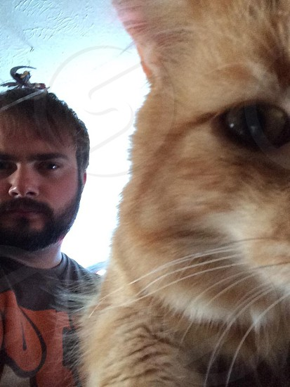 Cat selfie  photo
