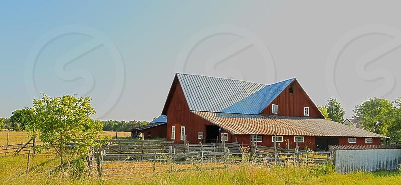 Farm in Gotland photo
