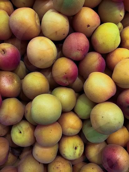 yellow round fruits photo
