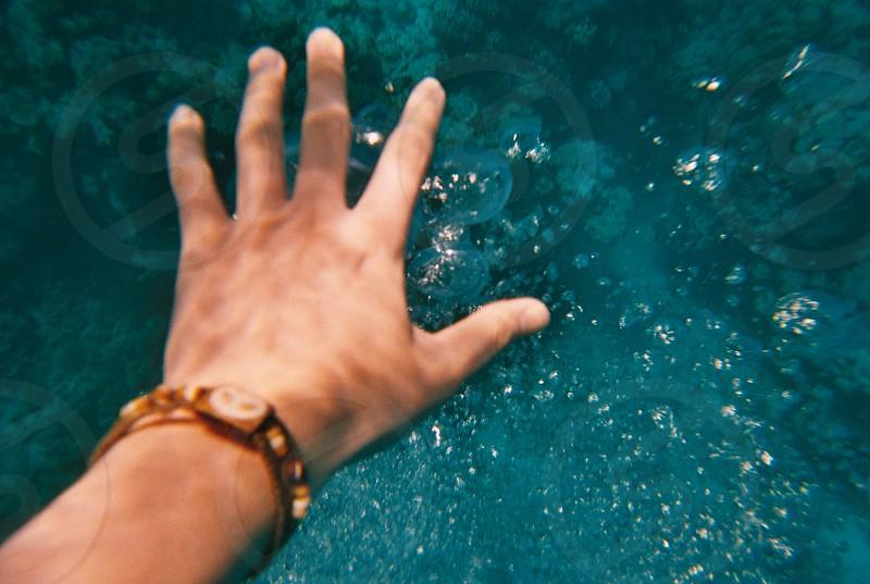 Underwater photo