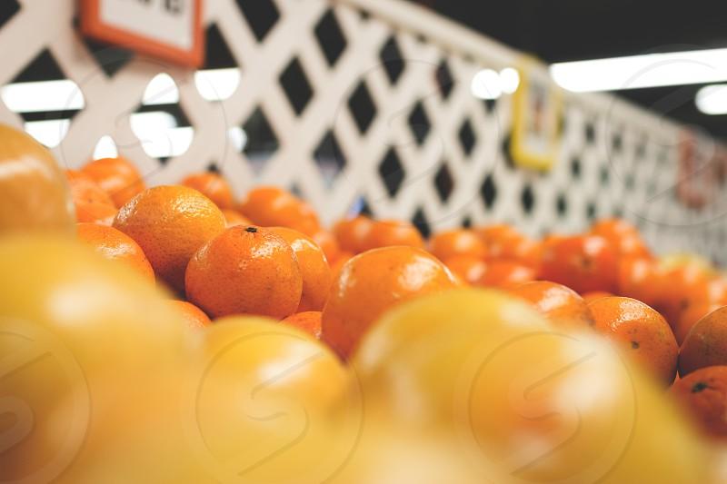 orange tangerine fruits photo