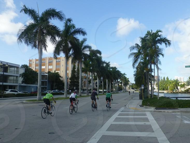 Las Olas Boulevard photo