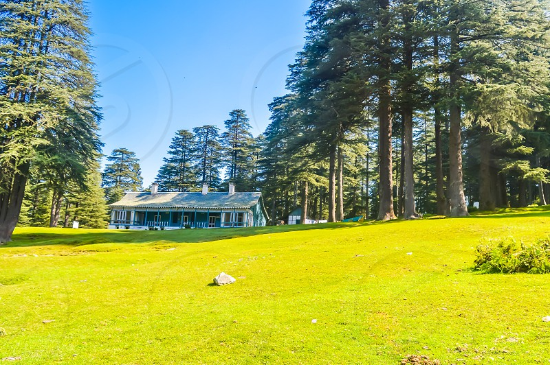cottage in hill station of grass field in park or garden surrounded with green tree place for relaxing exercise running or walking in park with blue sky and tall trees vacation holiday concept photo