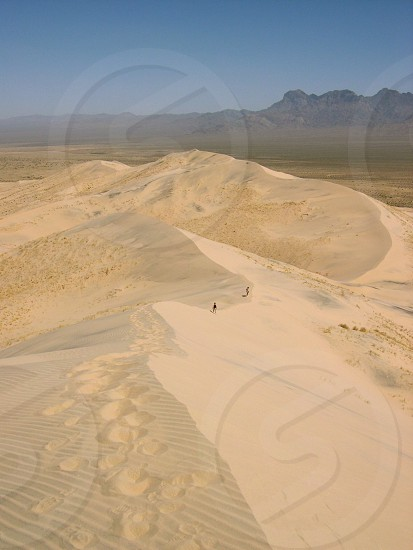 Top of the sand dune Kelso Sand Dunes Mojave photo