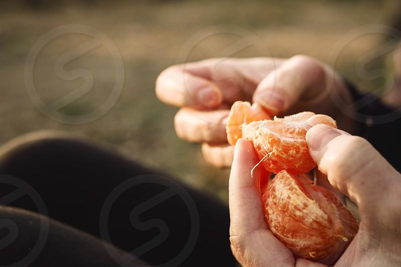 person holding a orange fruit photo