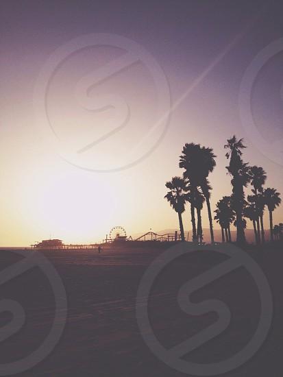 Santa Monica Pier.  photo