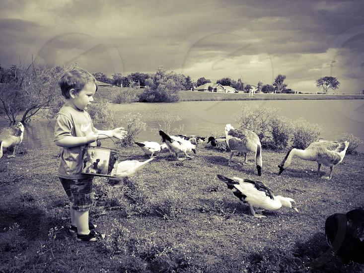 In the park feeding the ducks photo