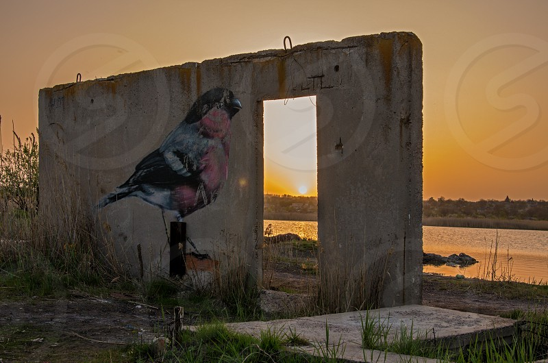 Sunset under the water space with graffiti an a wall  photo