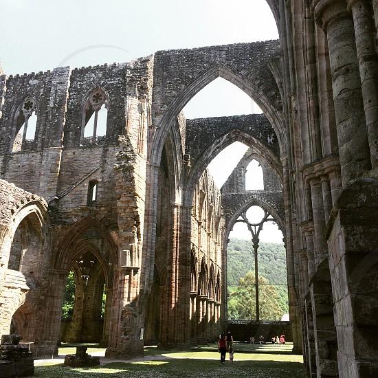 Tintern Abbey photo