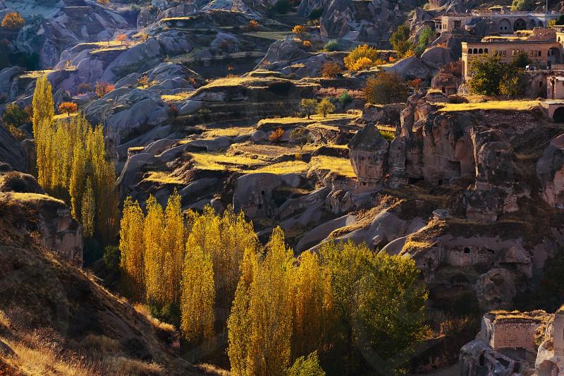 CappadociaTurkeypoplartreeslook downrockancientgoremeortahisarlandscape diagonal photo