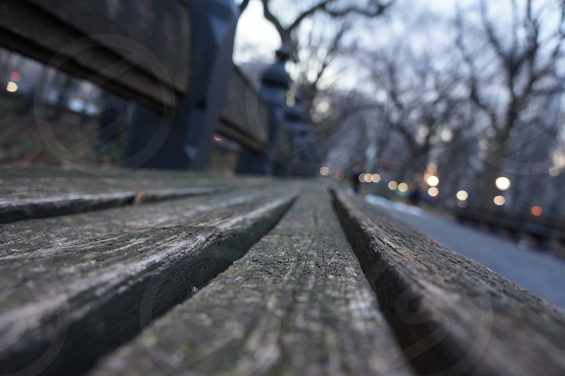 wood bench photo