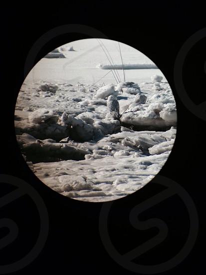Snowy Owl through a scope photo