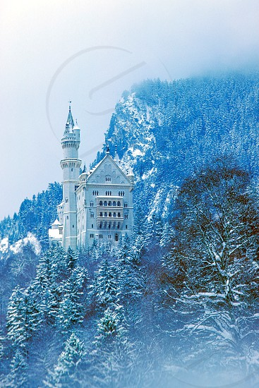 Snow-Covered Neuschwanstein Castle in Germany. photo