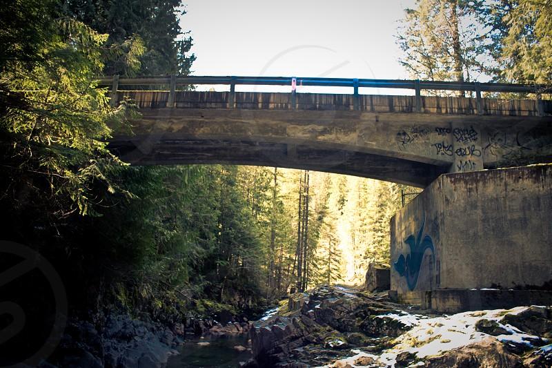 Bridge Across the Nooksack River photo