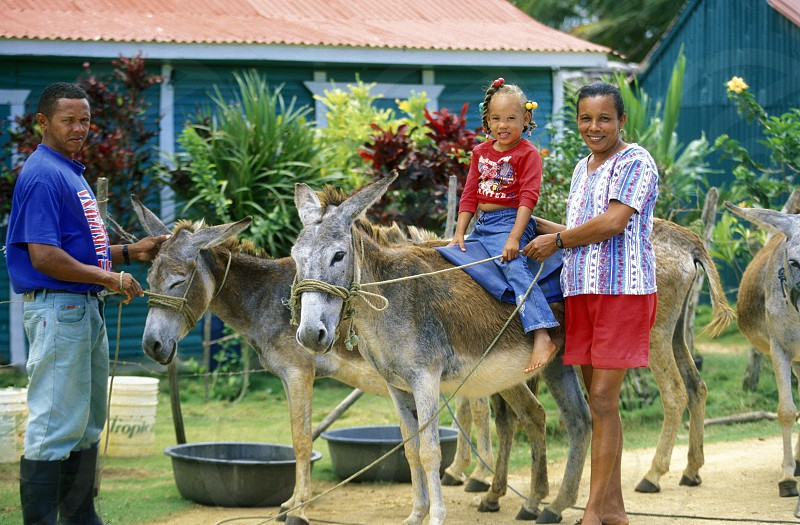 a Family at the Village of Las Terrenas on Samanaon in The Dominican Republic in the Caribbean Sea in Latin America. photo