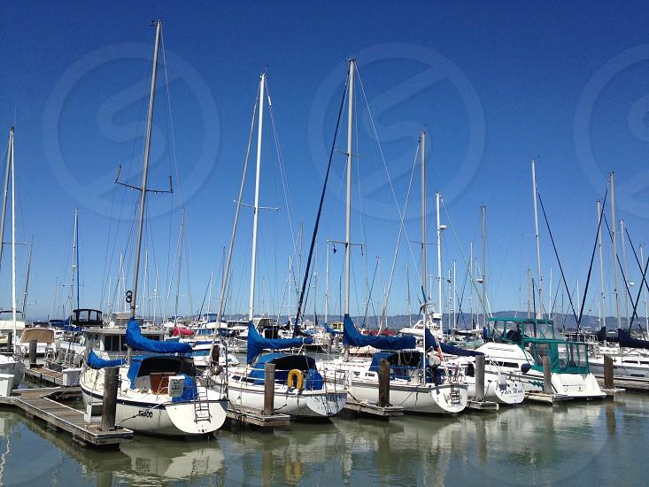 white yachts docked photo
