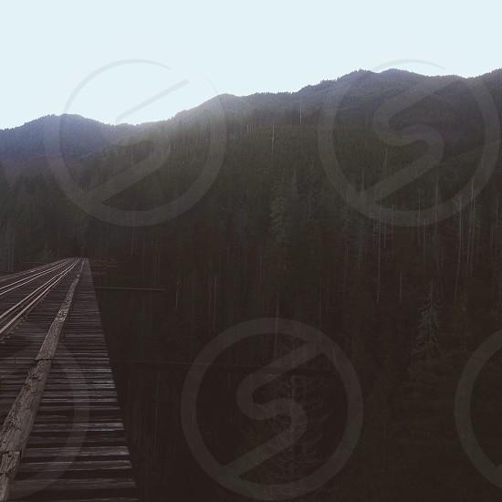 wooden bridge view photo