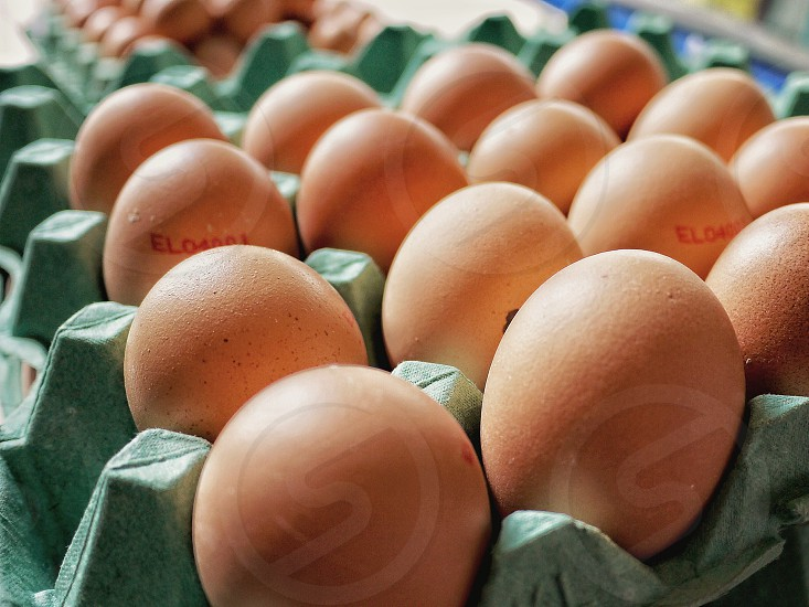 bundle of brown egg in tray close up photography photo
