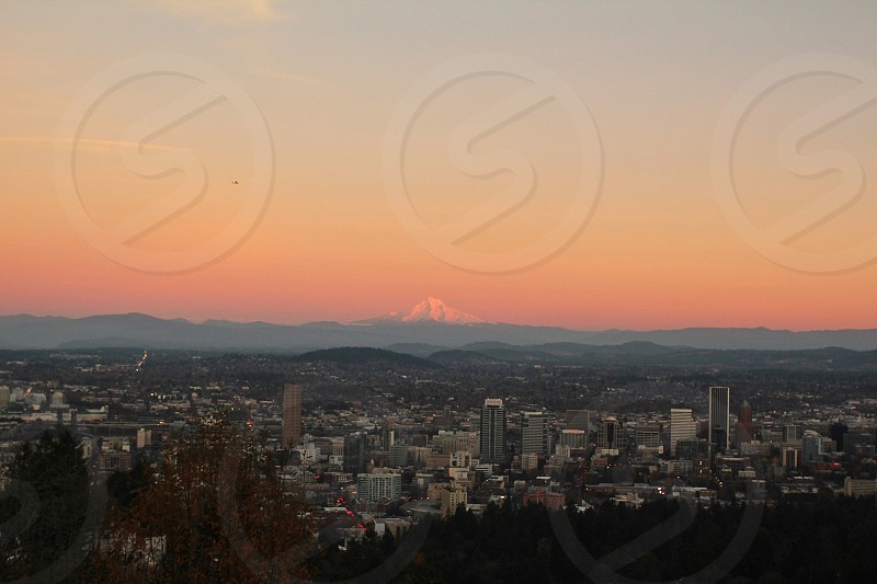 Destination: Mt Hood but you must drive to the famous food carts in town #Portland photo