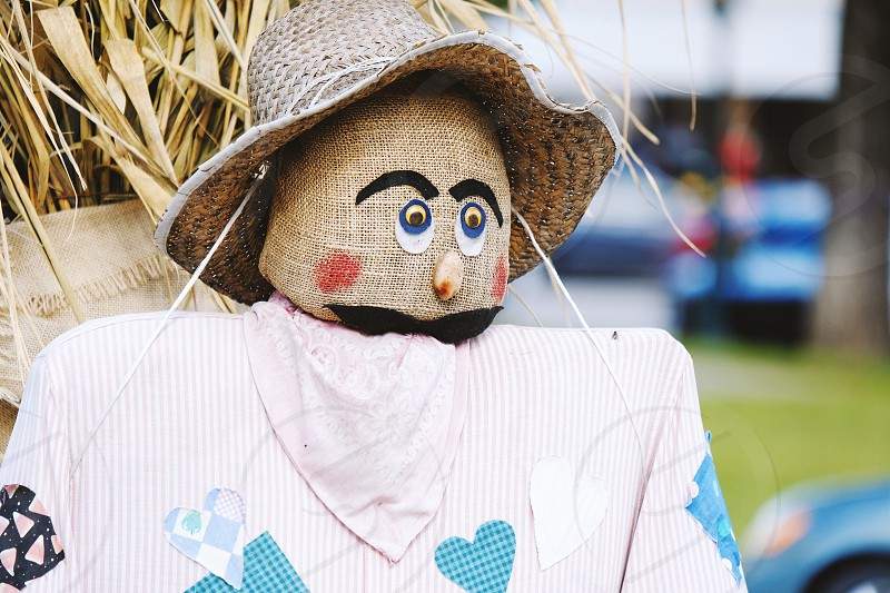 Fall scarecrow for festive decoration. photo