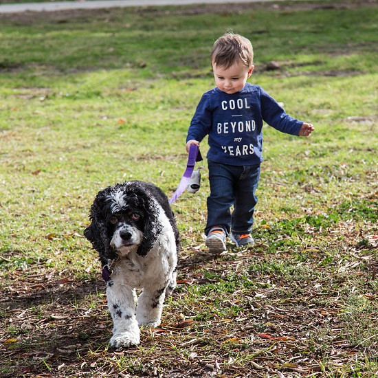 Toddler boy walking his dog in a park photo