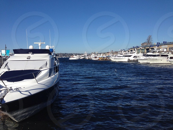aligned white and gray yachts photo